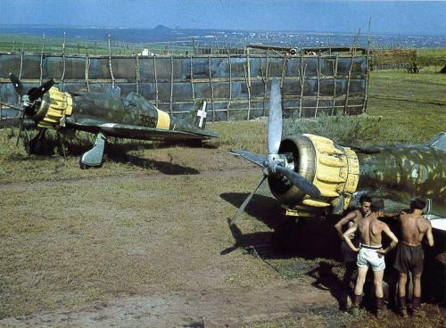 macchi-m-c-200-53-stormo-22-gruppo-autonomo-362a-squadriglia-russia-1941